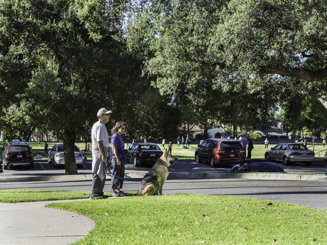 Brand Park, Northwest Glendale