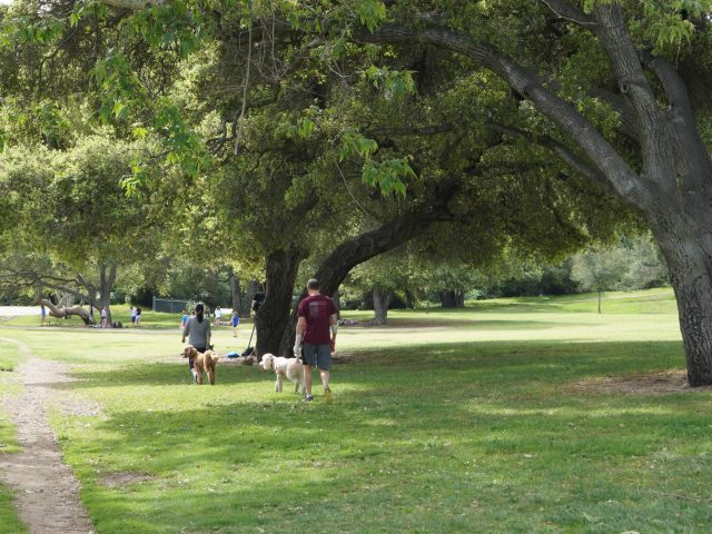 Crescenta Valley Park