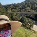 Pasadena Arroyo Bridge