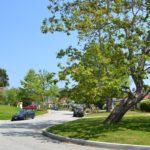 Glendale Ca Canyon Neighborhood