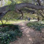 Glenwood Oaks Park Entrance 2