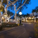 Montrose Holiday Lights